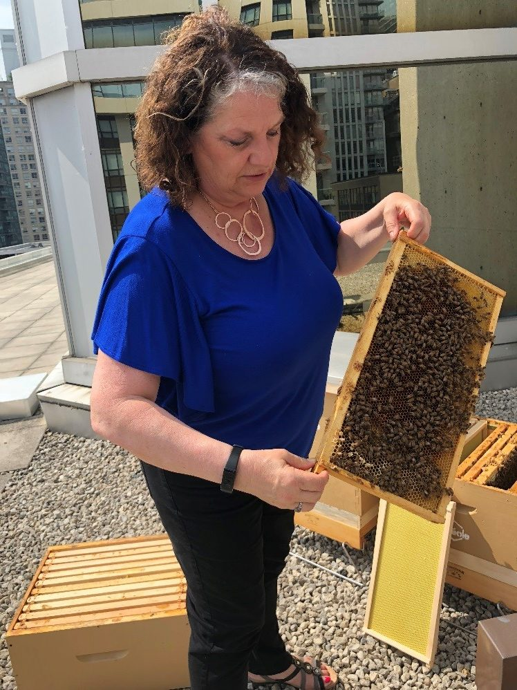 Photo of GWLRA employee with beehives