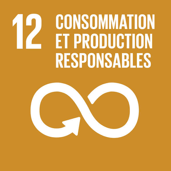 ODD 12 : Consommation et productions responsables